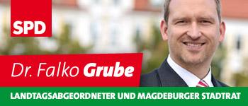 Falko Grube, MdL